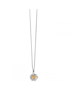 Beginnings Silver Daisy Gold Detail Necklace